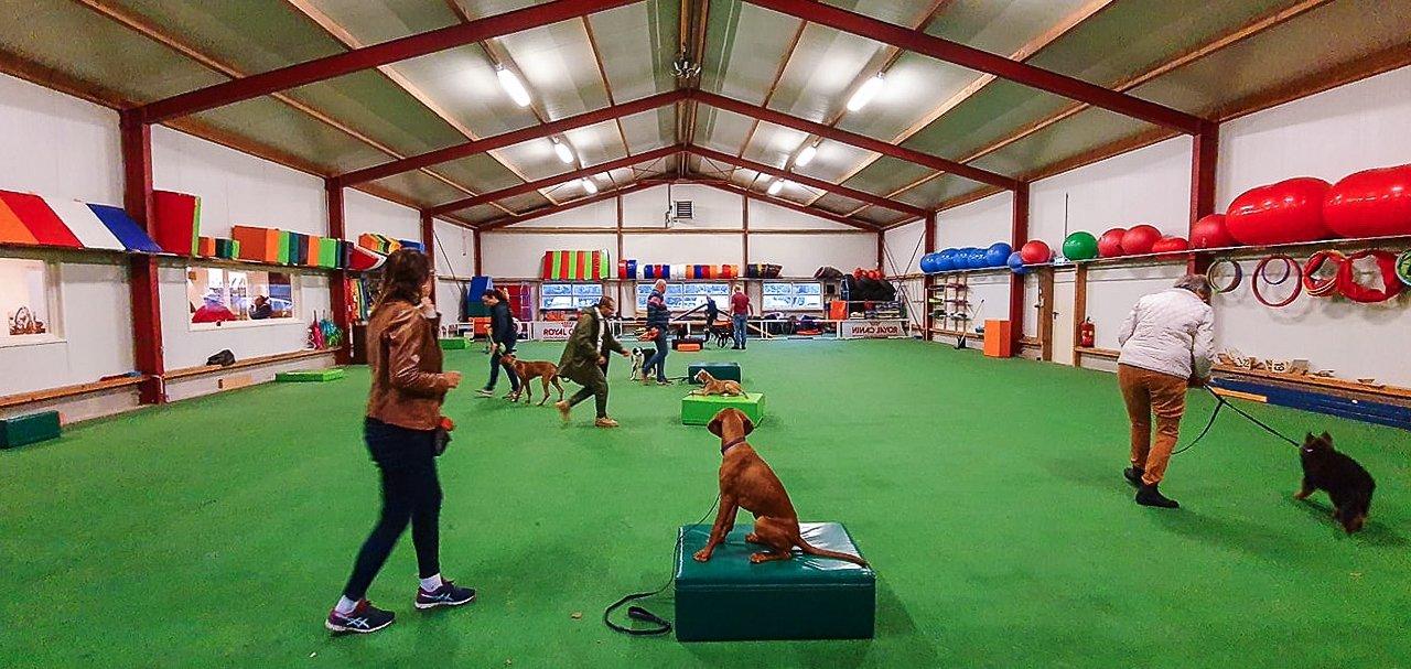 Trainingshal